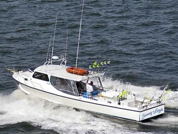 Chesapeake beach fishing chesapeake bay striper fishing for Chesapeake beach fishing charters